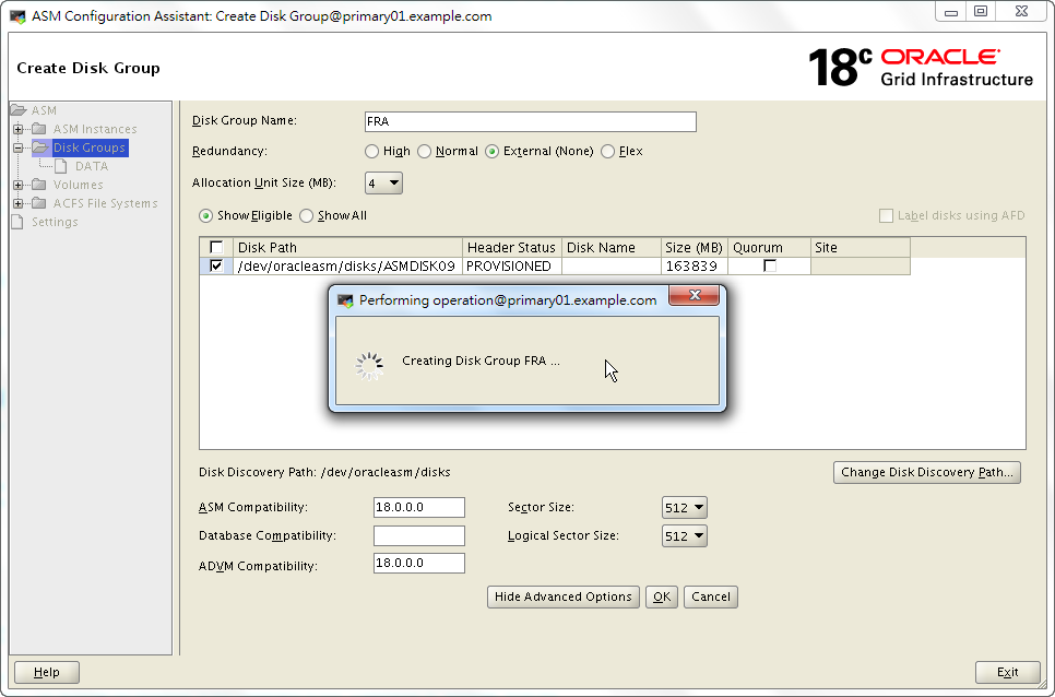 Oracle 18c ASMCA - Creating a New Disk Group