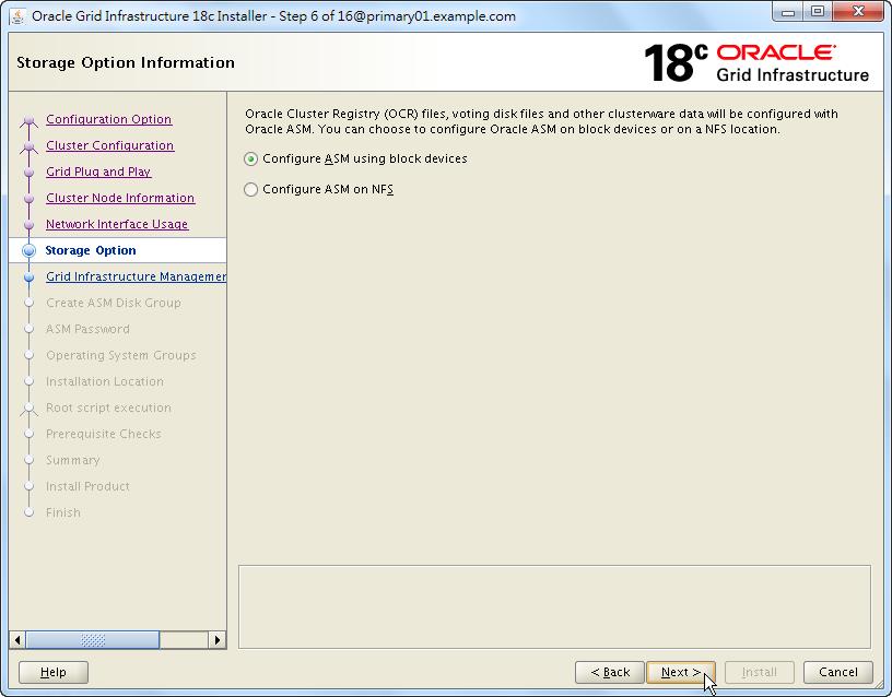 Oracle 18c Grid Infrastructure Installation - Storage Option Information