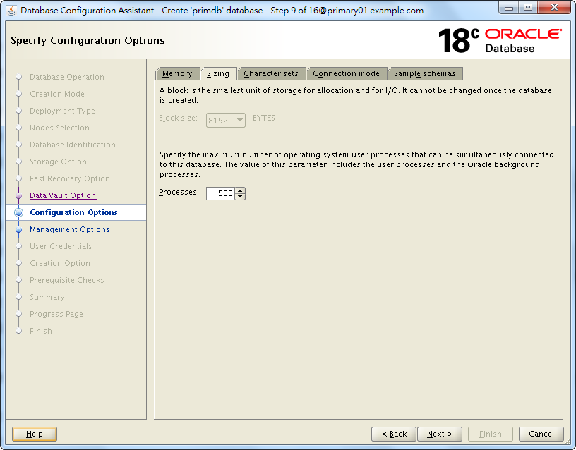 Oracle 18c DBCA - Create a RAC Database - Specify Configuration Options - Sizing
