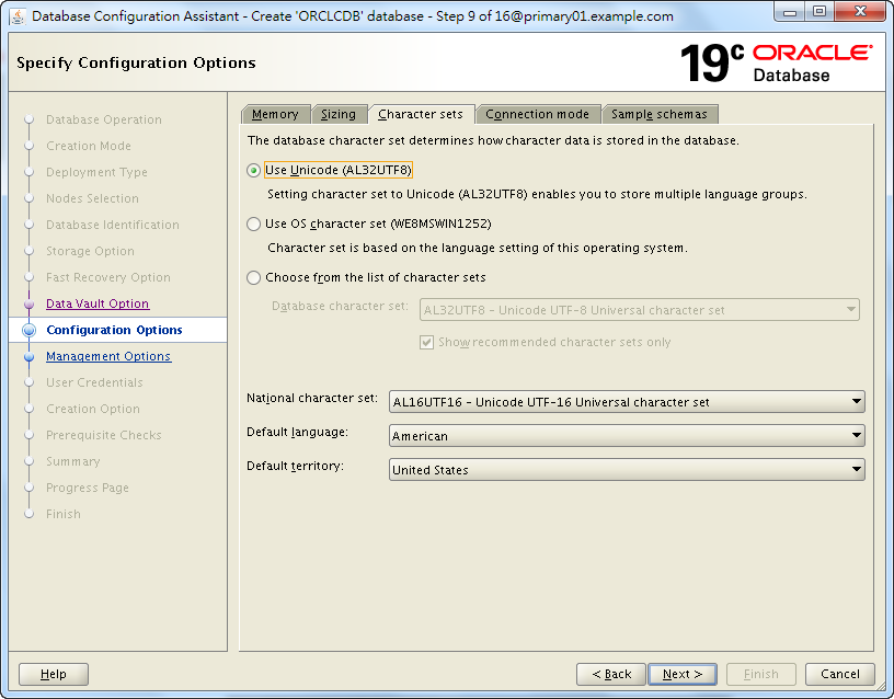 Oracle 19c Database Creation by DBCA - 09 - 03